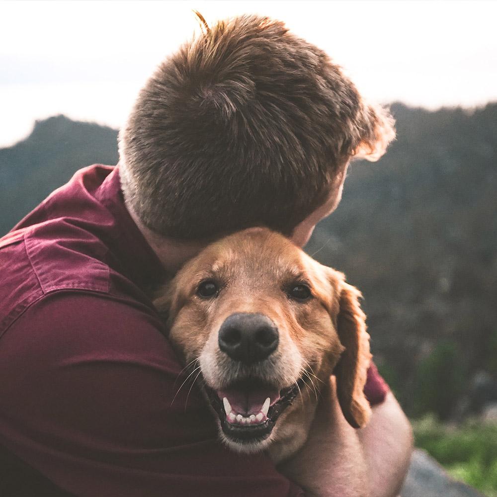 Psi savoir vivre w Ośrodku SAVOY
