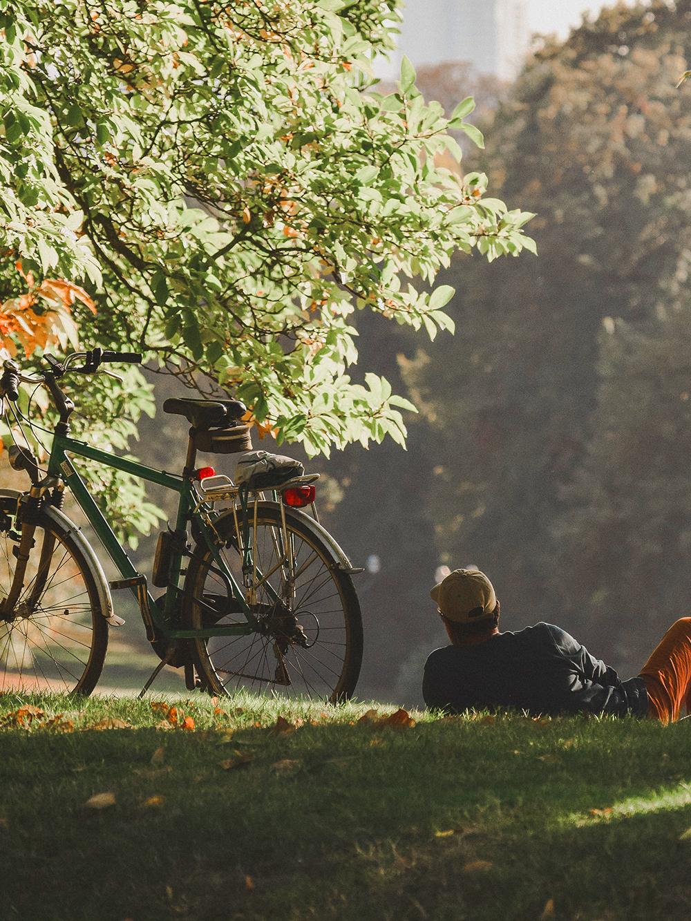 Podróże, wycieczki, szlaki rowerowe